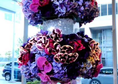 purple-spring-05