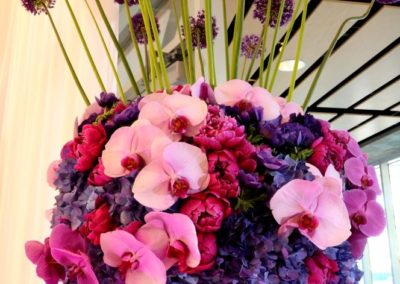 purple-spring-07