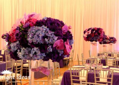 purple-spring-10