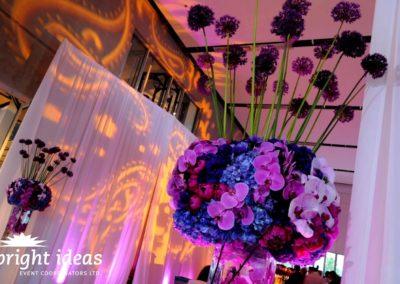 purple-spring-26