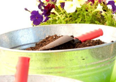 gardening-green-05