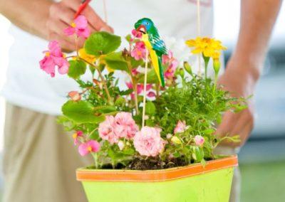 gardening-green-15