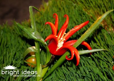Bright-Ideas-The-Garden-of-Eatin-12-1