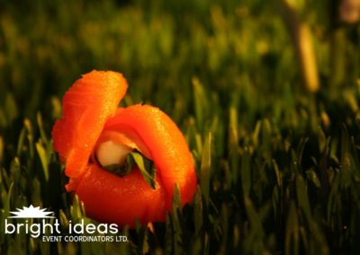 Bright-Ideas-The-Garden-of-Eatin-21-1