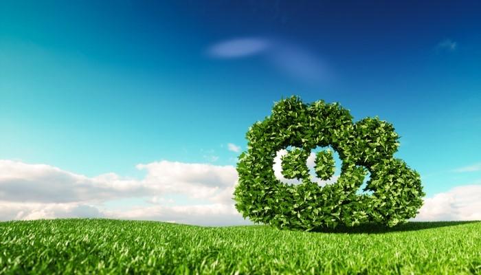 Zero Carbon Footprint Events
